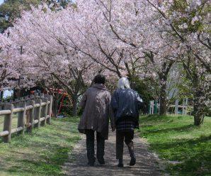 春の思い出~LIAN 南が丘~