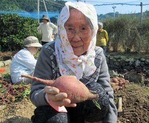 さんくすの芋ほりDay