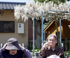 日本晴れの日に散策~1番館
