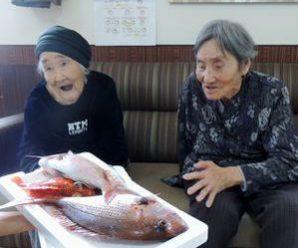 お魚いただきました~