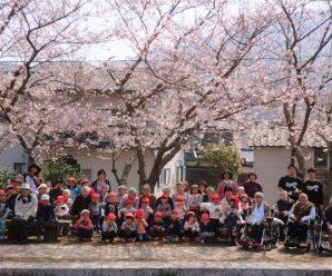お花見と子どもたちと~陽だまりの家