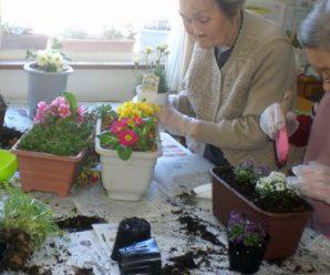 1番館恒例♪「春」のプランターの花の植えかえ