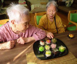 きれいな和菓子どれにする?~2番館