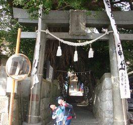 神社めぐり⛩スマイルキッズ